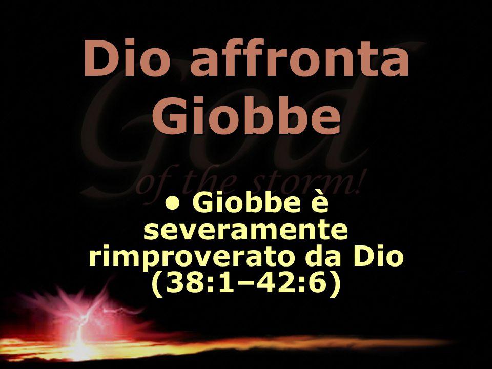 Dio affronta Giobbe Giobbe è severamente rimproverato da Dio (38:1–42:6) Giobbe è severamente rimproverato da Dio (38:1–42:6)