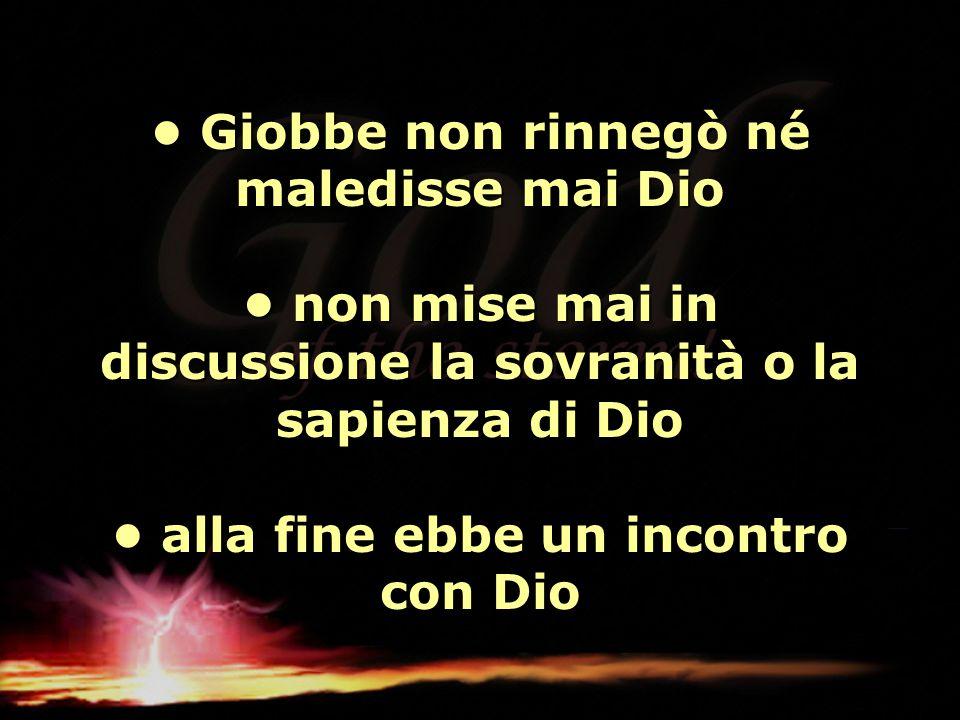 Giobbe non rinnegò né maledisse mai Dio non mise mai in discussione la sovranità o la sapienza di Dio alla fine ebbe un incontro con Dio Giobbe non ri