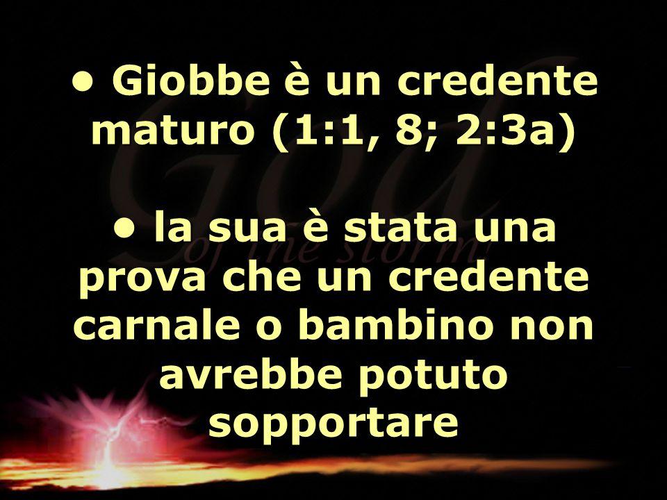 Giobbe è un credente maturo (1:1, 8; 2:3a) la sua è stata una prova che un credente carnale o bambino non avrebbe potuto sopportare Giobbe è un creden