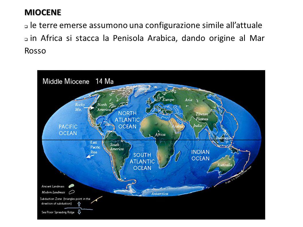 MIOCENE  le terre emerse assumono una configurazione simile all'attuale  in Africa si stacca la Penisola Arabica, dando origine al Mar Rosso