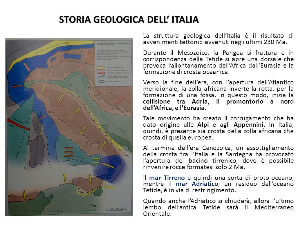 STORIA GEOLOGICA DELL' ITALIA La struttura geologica dell'Italia è il risultato di avvenimenti tettonici avvenuti negli ultimi 230 Ma. Durante il Meso