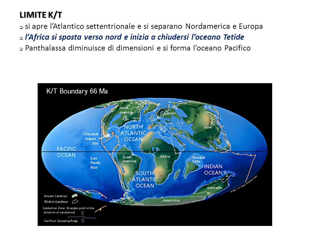 LIMITE K/T  si apre l'Atlantico settentrionale e si separano Nordamerica e Europa  l'Africa si sposta verso nord e inizia a chiudersi l'oceano Tetid