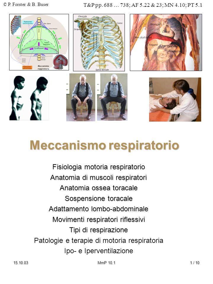 © P. Forster & B. Buser T&P pp. 688 … 738; AF 5.22 & 23; MN 4.10; PT 5.1 15.10.03MmP 10.11 / 10 Meccanismo respiratorio Fisiologia motoria respiratori
