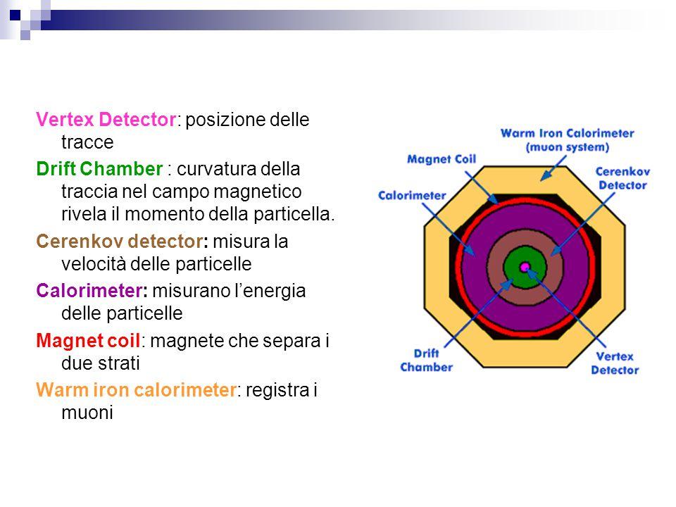 Vertex Detector: posizione delle tracce Drift Chamber : curvatura della traccia nel campo magnetico rivela il momento della particella. Cerenkov detec