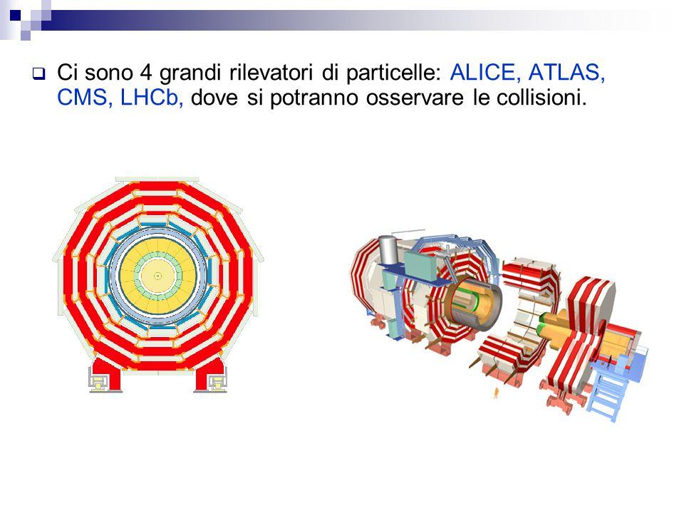  Ci sono 4 grandi rilevatori di particelle: ALICE, ATLAS, CMS, LHCb, dove si potranno osservare le collisioni.