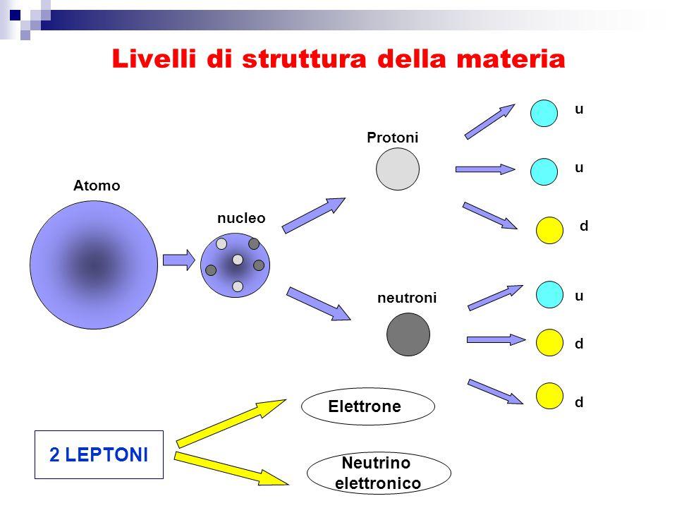 Livelli di struttura della materia Atomo nucleo Protoni neutroni u u u d d d Neutrino elettronico Elettrone 2 LEPTONI