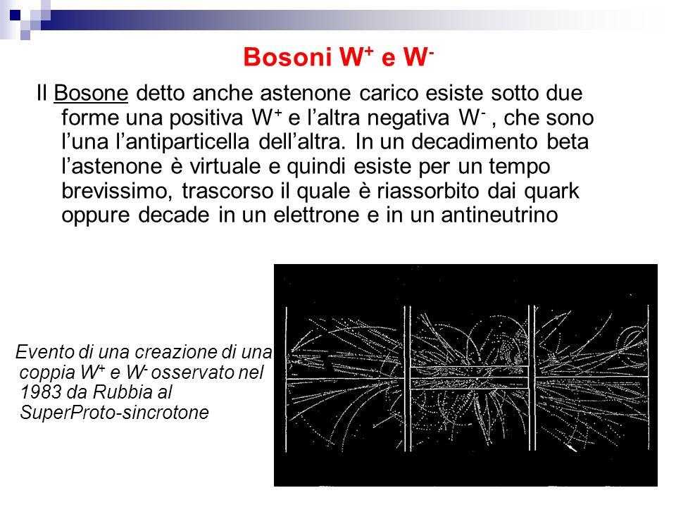 Bosoni W + e W - Evento di una creazione di una coppia W + e W - osservato nel 1983 da Rubbia al SuperProto-sincrotone Il Bosone detto anche astenone