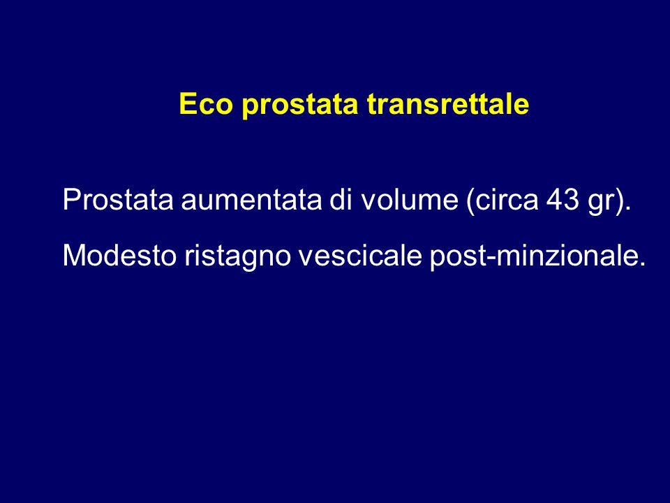 Prostata aumentata di volume (circa 43 gr). Modesto ristagno vescicale post-minzionale. Eco prostata transrettale