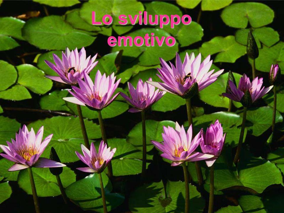 Emozioni ed interazioni Le emozioni emergono nel contesto relazionale.