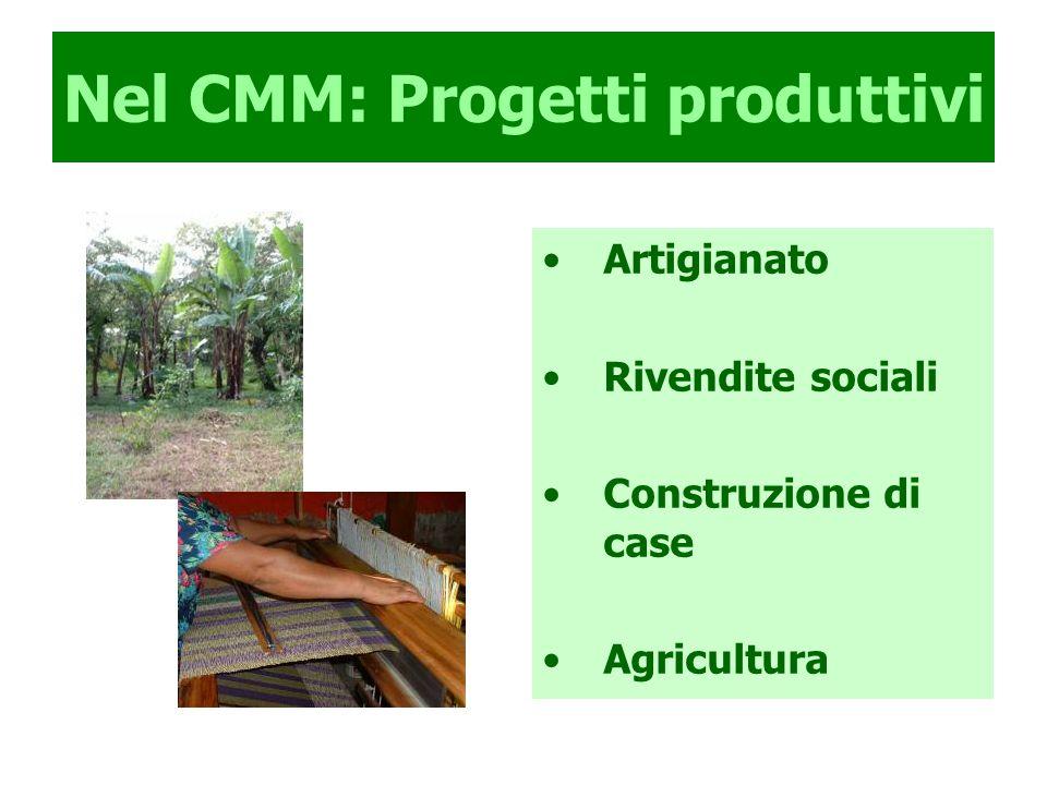 Nel CMM: Progetti produttivi Artigianato Rivendite sociali Construzione di case Agricultura
