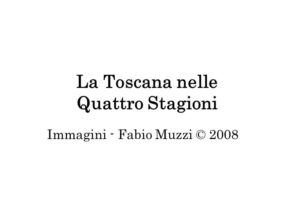 La Toscana nelle Quattro Stagioni Immagini - Fabio Muzzi © 2008