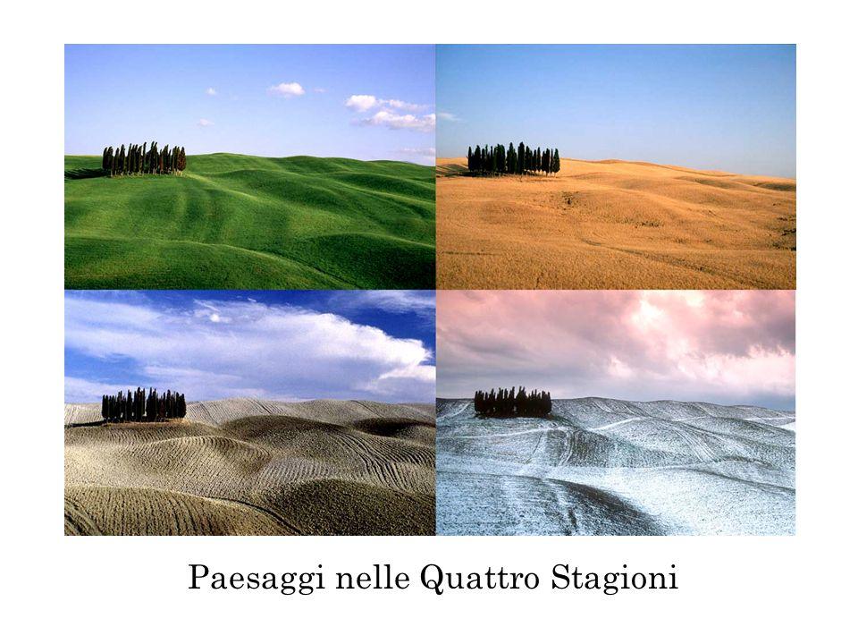 Paesaggi nelle Quattro Stagioni