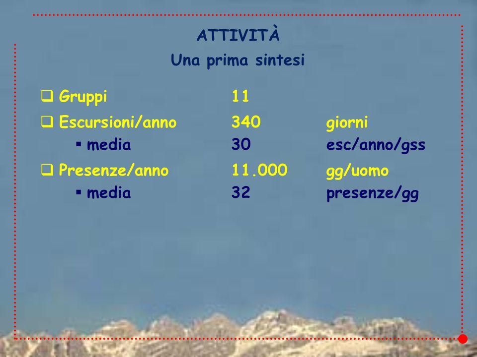  Gruppi11  Escursioni/anno340giorni  media30esc/anno/gss  Presenze/anno11.000gg/uomo  media32presenze/gg ATTIVITÀ Una prima sintesi