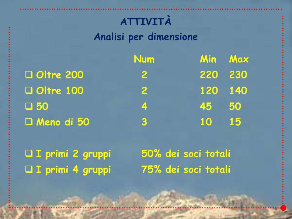 NumMinMax  Oltre 2002220230  Oltre 1002120140  5044550  Meno di 5031015  I primi 2 gruppi50% dei soci totali  I primi 4 gruppi75% dei soci totali ATTIVITÀ Analisi per dimensione