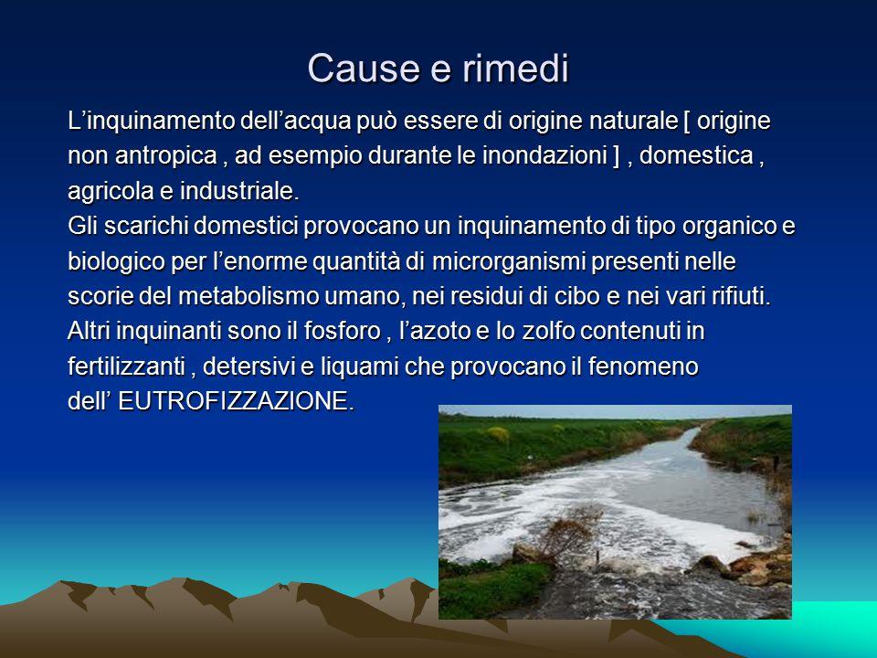 L'inquinamento dell'acqua può essere di origine naturale [ origine non antropica, ad esempio durante le inondazioni ], domestica, agricola e industria