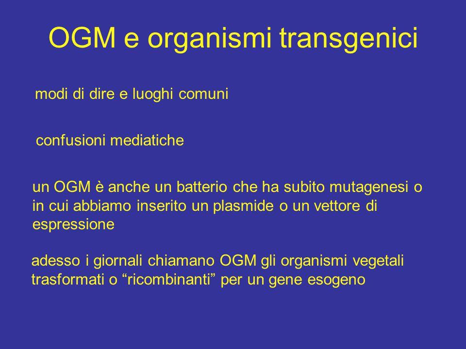 OGM e organismi transgenici modi di dire e luoghi comuni confusioni mediatiche un OGM è anche un batterio che ha subito mutagenesi o in cui abbiamo in