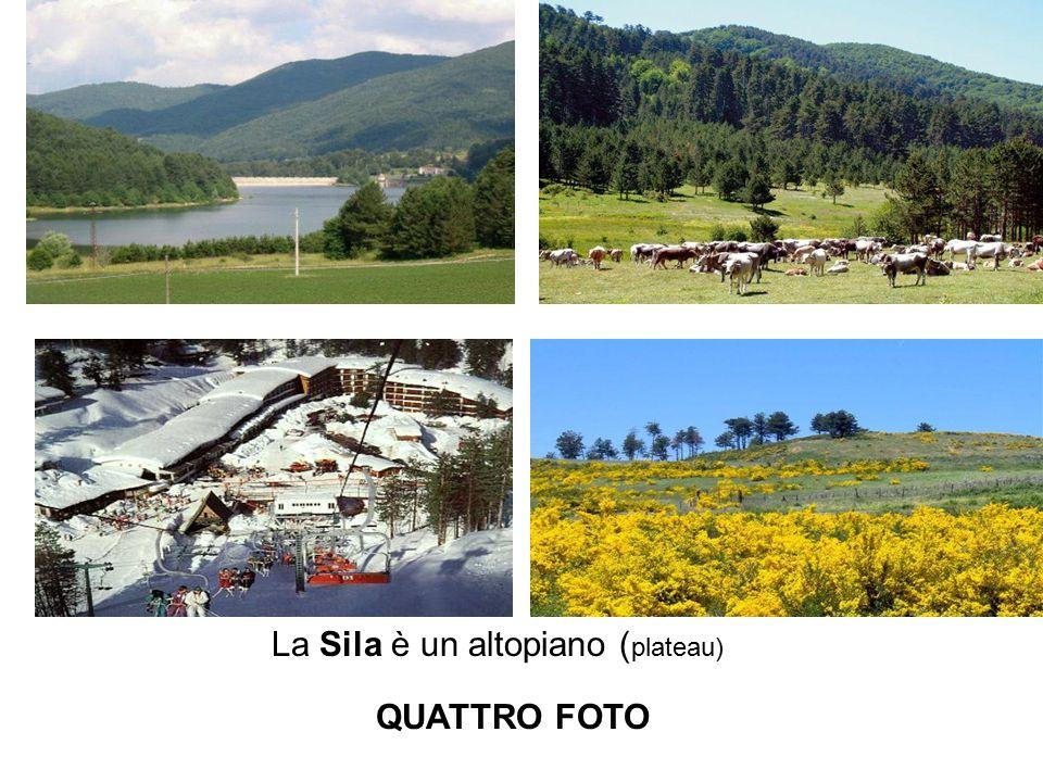 La Sila è un altopiano ( plateau) QUATTRO FOTO