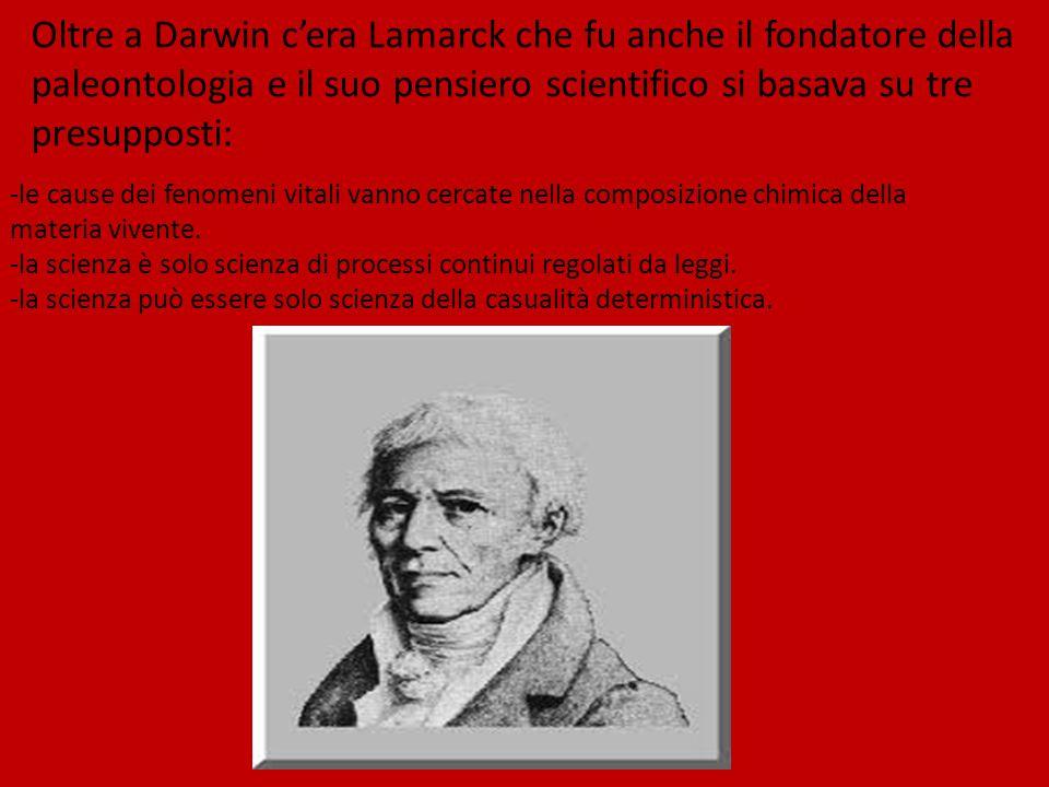 Oltre a Darwin c'era Lamarck che fu anche il fondatore della paleontologia e il suo pensiero scientifico si basava su tre presupposti: -le cause dei fenomeni vitali vanno cercate nella composizione chimica della materia vivente.