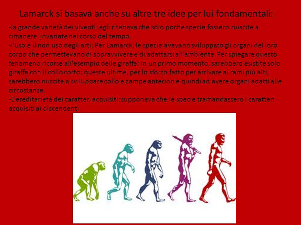 Lamarck si basava anche su altre tre idee per lui fondamentali: -la grande varietà dei viventi: egli riteneva che solo poche specie fossero riuscite a rimanere invariate nel corso del tempo.
