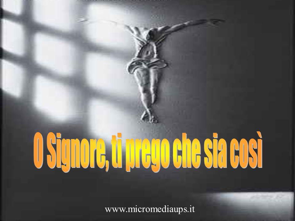 www.micromediaups.it