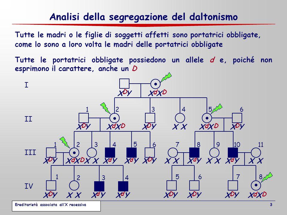 Analisi della segregazione del daltonismo come lo sono a loro volta le madri delle portatrici obbligate Tutte le madri o le figlie di soggetti affetti sono portatrici obbligate, Tutte le portatrici obbligate possiedono un allele d e, poiché non esprimono il carattere, anche un D dD dDdD dD dD D dd dd d D DDD D DDDD d I II III IV 1234 1234 5 67891011 1 2 5678 56 34 X X Y 3 Ereditarietà associata all'X recessiva