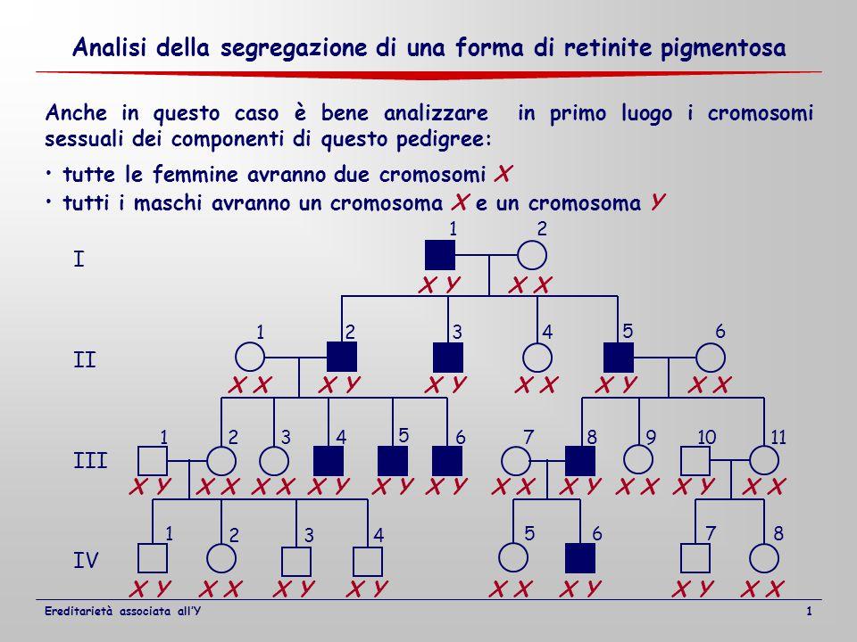 I II III IV 12 1234 1234 5 67891011 1 2 5678 56 34 Anche in questo caso è bene analizzare in primo luogo i cromosomi sessuali dei componenti di questo pedigree: tutte le femmine avranno due cromosomi X tutti i maschi avranno un cromosoma X e un cromosoma Y X X Y X X Y X X YX X Y X X Y Analisi della segregazione di una forma di retinite pigmentosa Ereditarietà associata all'Y1