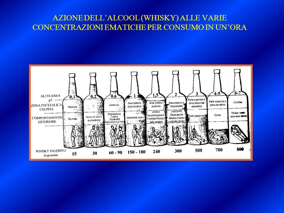 AZIONE DELL'ALCOOL (WHISKY) ALLE VARIE CONCENTRAZIONI EMATICHE PER CONSUMO IN UN'ORA