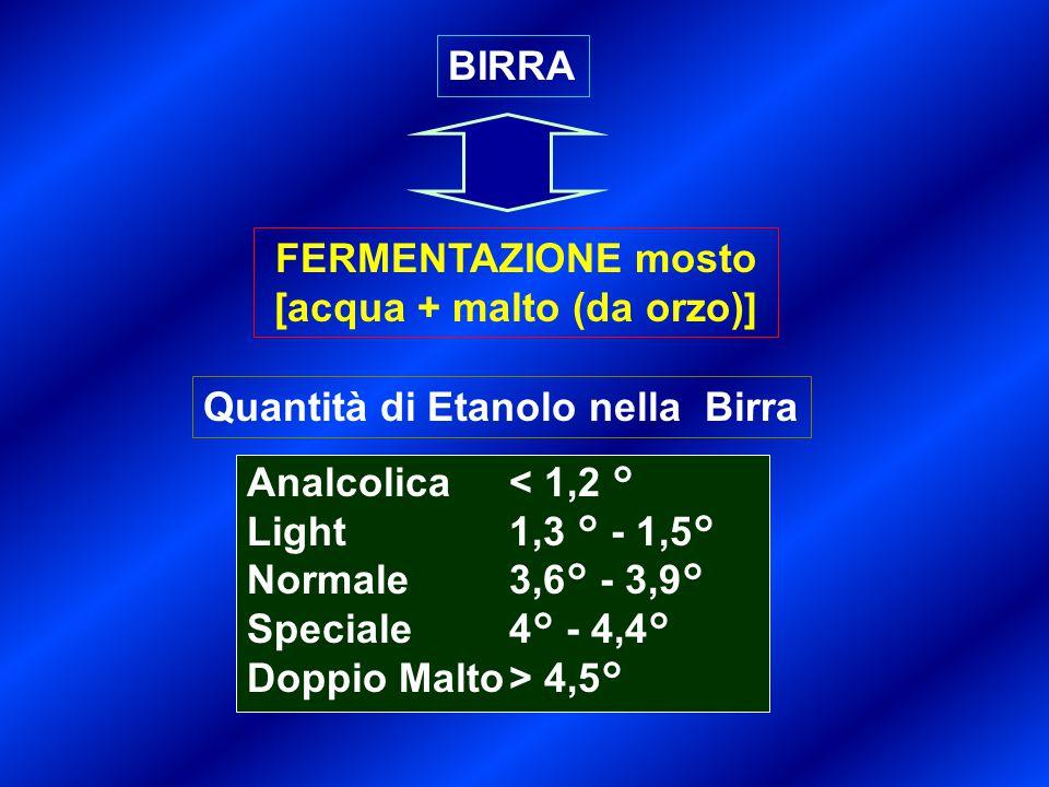 BIRRA FERMENTAZIONE mosto [acqua + malto (da orzo)] Quantità di Etanolo nella Birra Analcolica< 1,2 ° Light1,3 ° - 1,5° Normale3,6° - 3,9° Speciale4°