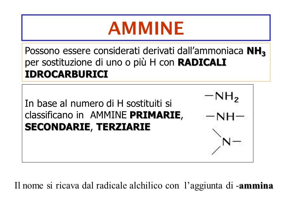 AMMINE NH 3 RADICALI IDROCARBURICI Possono essere considerati derivati dall'ammoniaca NH 3 per sostituzione di uno o più H con RADICALI IDROCARBURICI