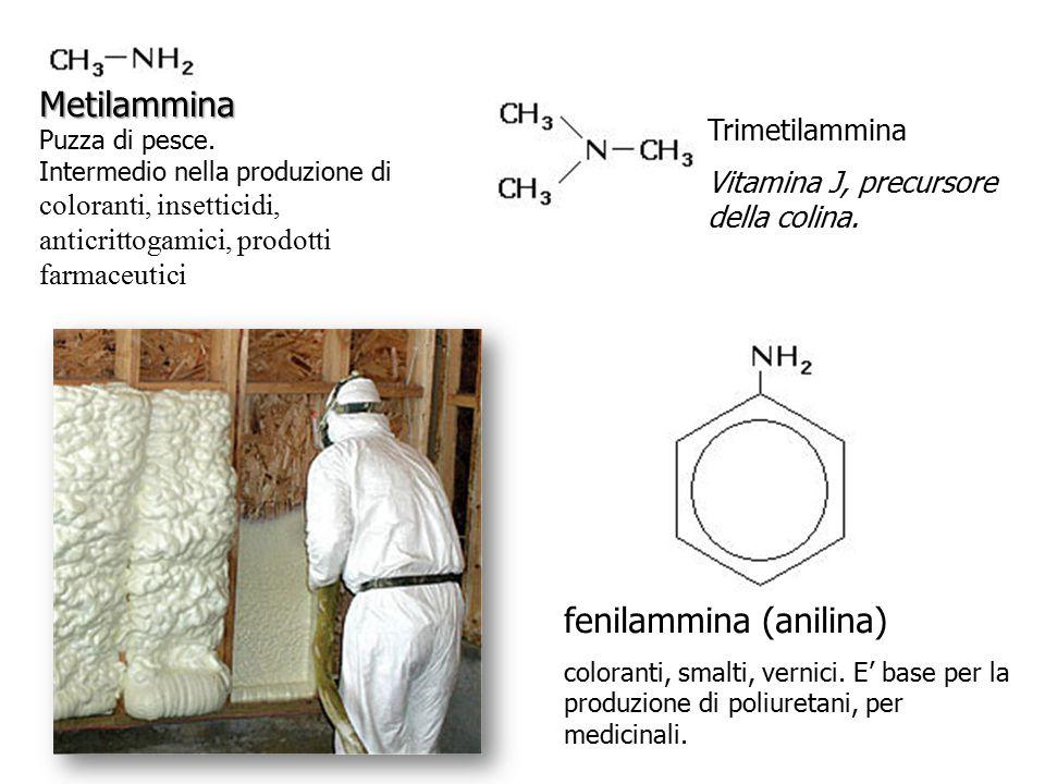 Metilammina Metilammina Puzza di pesce. Intermedio nella produzione di coloranti, insetticidi, anticrittogamici, prodotti farmaceutici Trimetilammina