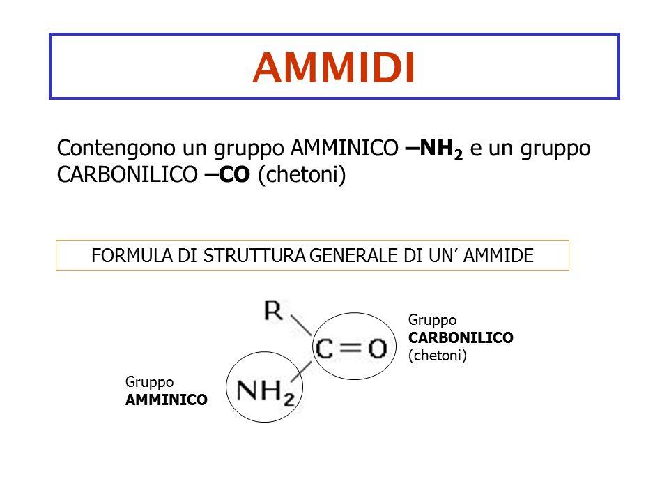 AMMIDI Contengono un gruppo AMMINICO –NH 2 e un gruppo CARBONILICO –CO (chetoni) FORMULA DI STRUTTURA GENERALE DI UN' AMMIDE Gruppo CARBONILICO (cheto