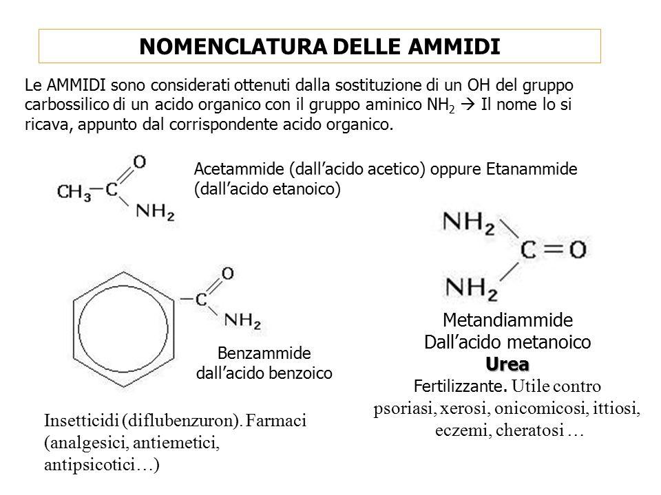 NOMENCLATURA DELLE AMMIDI Le AMMIDI sono considerati ottenuti dalla sostituzione di un OH del gruppo carbossilico di un acido organico con il gruppo a