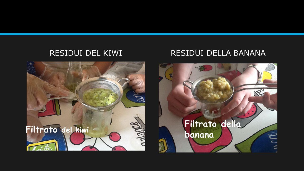 RESIDUI DEL KIWIRESIDUI DELLA BANANA Filtrato del kiwi Filtrato della banana