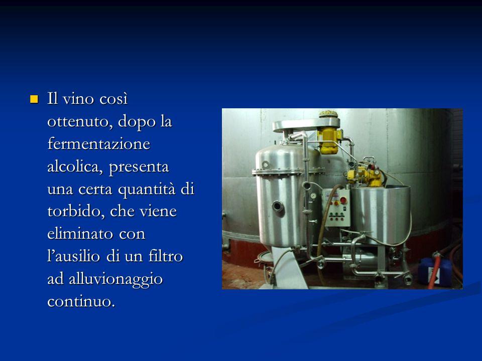 Il vino così ottenuto, dopo la fermentazione alcolica, presenta una certa quantità di torbido, che viene eliminato con l'ausilio di un filtro ad alluv