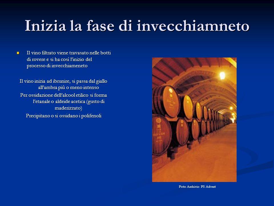 Concia Si effettua con l'aggiunta al vino dei seguenti prodotti: Si effettua con l'aggiunta al vino dei seguenti prodotti: - Alcool etilico o acquavite di vino - Mosto cotto o mosto concentrato Esempio di alcolizzazione Alcool 96° 18-14=4 Gradazione desiderata 18° Alc del vino 14° 96-18=78 Si deduce che per potare 100 litri di vino da 14° a 18 gradi alcolici occorreranno 5,128 litri di alcool.