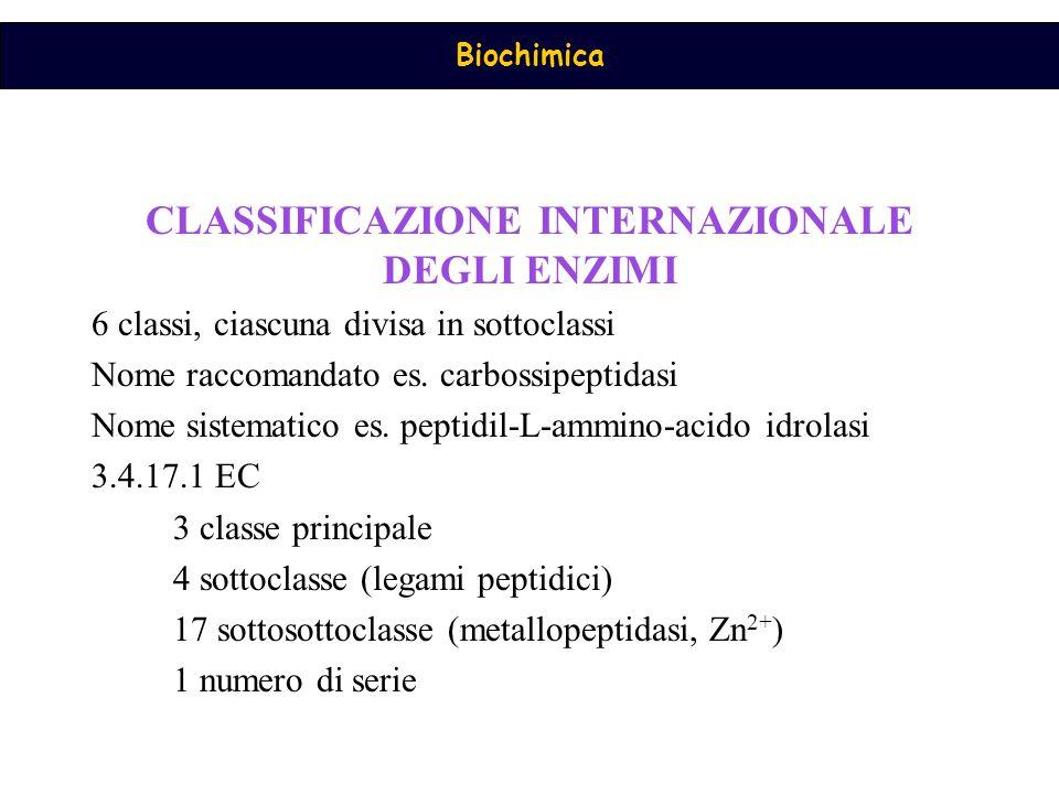 Biochimica CLASSIFICAZIONE INTERNAZIONALE DEGLI ENZIMI 6 classi, ciascuna divisa in sottoclassi Nome raccomandato es. carbossipeptidasi Nome sistemati