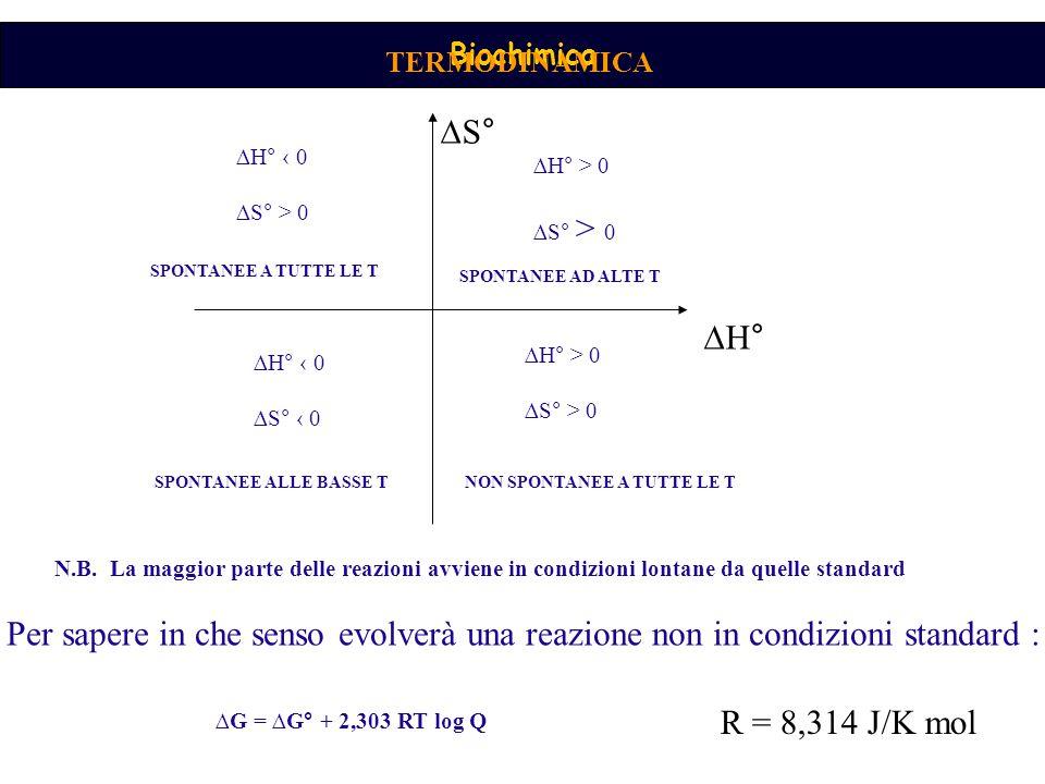 Biochimica TERMODINAMICA ∆S° ∆H° ∆H° ‹ 0 ∆S° > 0 SPONTANEE A TUTTE LE T ∆H° > 0 ∆S° > 0 ∆H° > 0 ∆S° > 0 ∆H° ‹ 0 ∆S° ‹ 0 SPONTANEE AD ALTE T SPONTANEE