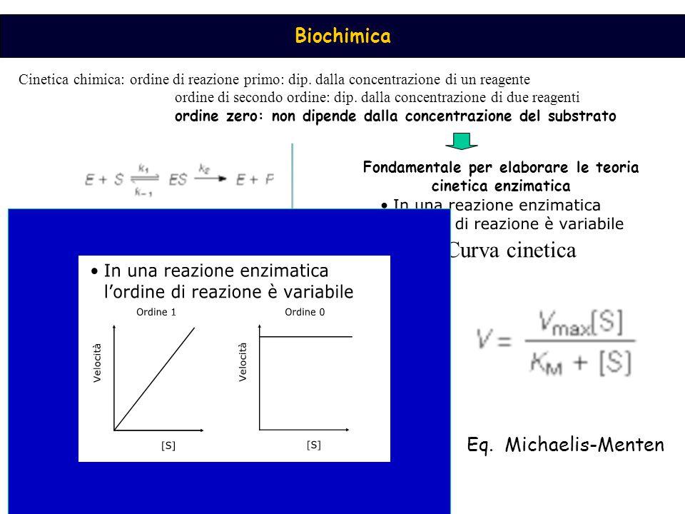 Biochimica Cinetica chimica: ordine di reazione primo: dip. dalla concentrazione di un reagente ordine di secondo ordine: dip. dalla concentrazione di