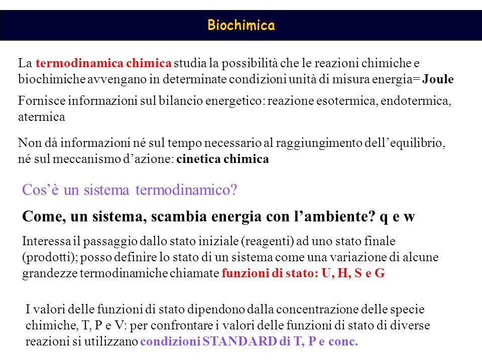Biochimica La termodinamica chimica studia la possibilità che le reazioni chimiche e biochimiche avvengano in determinate condizioni unità di misura e