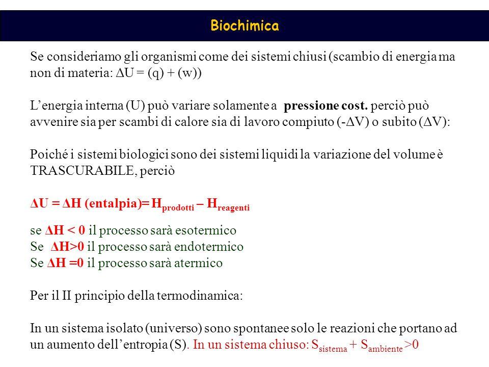 Biochimica Se consideriamo gli organismi come dei sistemi chiusi (scambio di energia ma non di materia: ΔU = (q) + (w)) L'energia interna (U) può vari