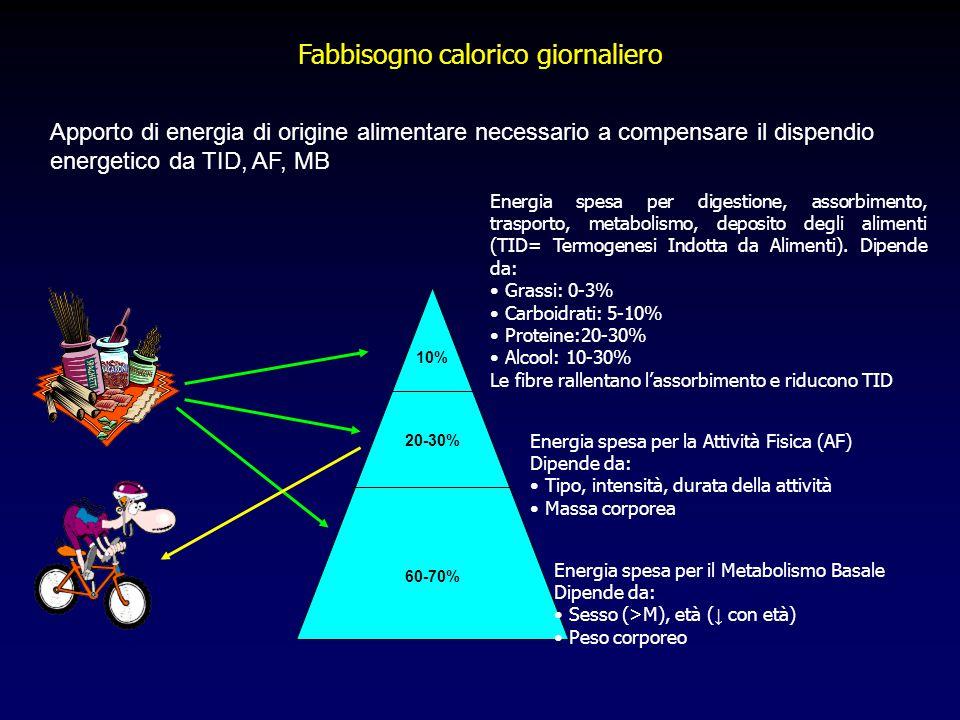 Fabbisogno calorico giornaliero Energia spesa per digestione, assorbimento, trasporto, metabolismo, deposito degli alimenti (TID= Termogenesi Indotta