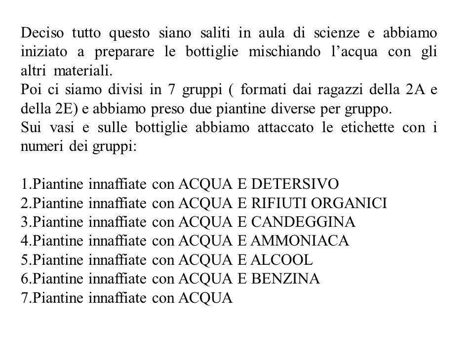 Gli INQUINANTI che abbiamo deciso di usare sono: -Benzina -Ammoniaca -Rifiuti organici -Candeggina -Alcool -Detersivo 2 piantine ( 1 di kalanchoe e una di primula ) sono state innaffiate solo con acqua.
