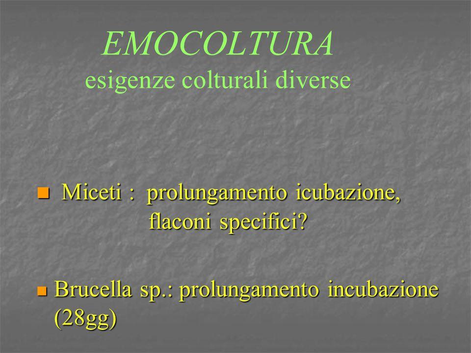 EMOCOLTURA esigenze colturali diverse Miceti : prolungamento icubazione, flaconi specifici? Miceti : prolungamento icubazione, flaconi specifici? Bruc