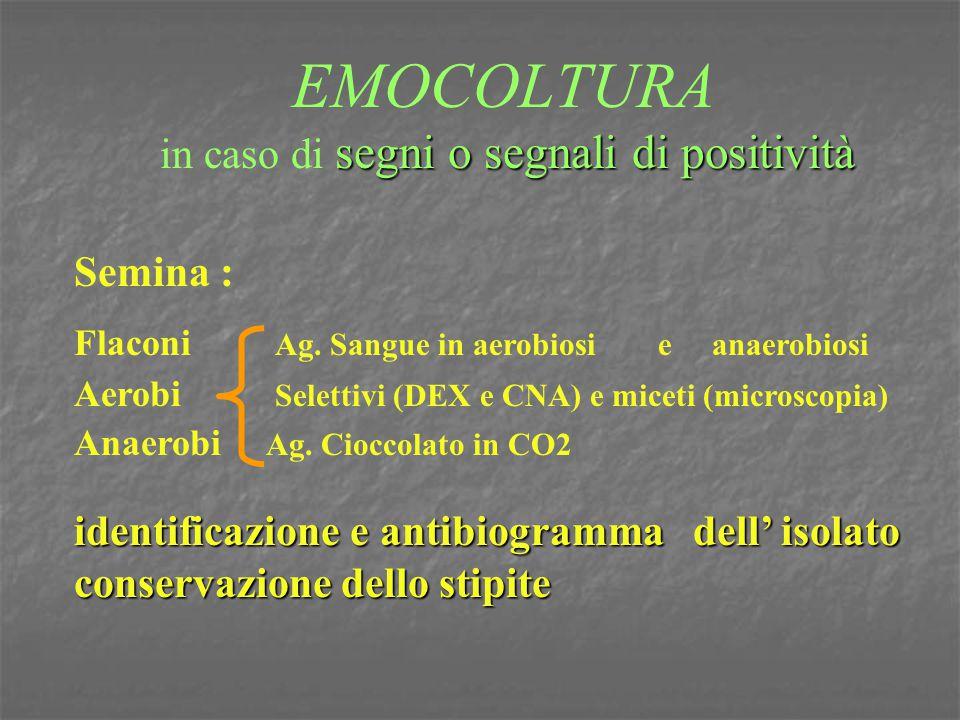 segni o segnali di positività EMOCOLTURA in caso di segni o segnali di positività Semina : Flaconi Ag. Sangue in aerobiosi e anaerobiosi Aerobi Selett