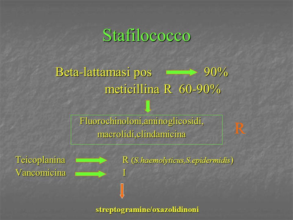 Stafilococco Beta-lattamasi pos 90% meticillina R 60-90% meticillina R 60-90%Fluorochinoloni,aminoglicosidi,macrolidi,clindamicina Teicoplanina R (S.h