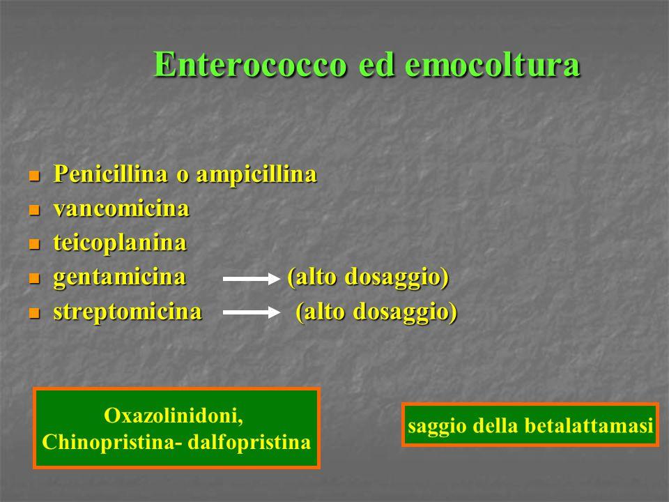 Enterococco ed emocoltura Penicillina o ampicillina Penicillina o ampicillina vancomicina vancomicina teicoplanina teicoplanina gentamicina (alto dosa