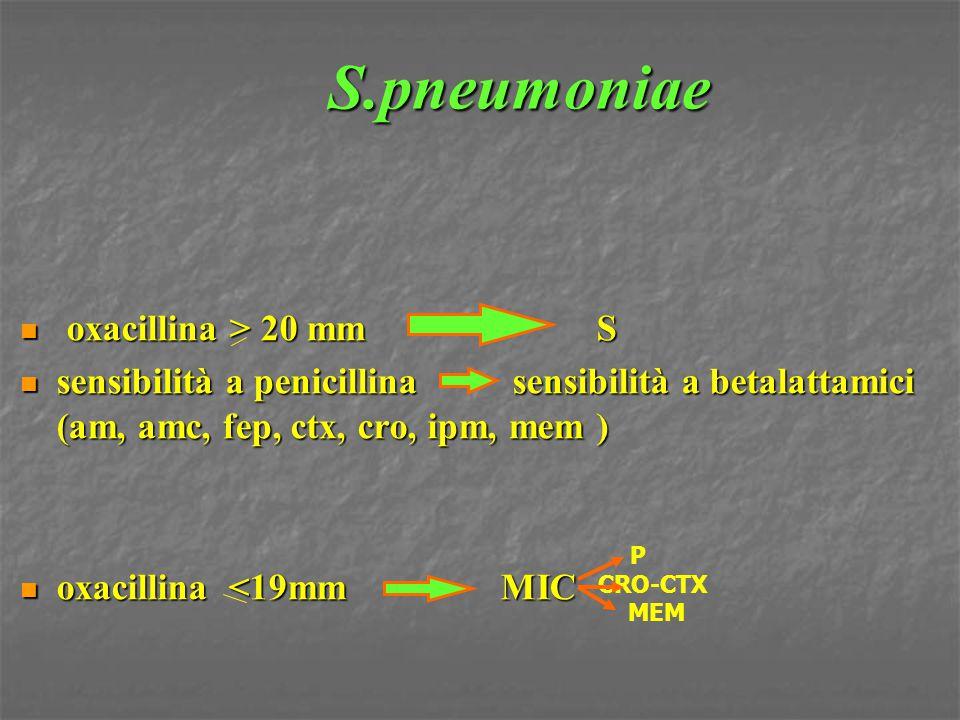 S.pneumoniae oxacillina > 20 mmS oxacillina > 20 mmS sensibilità a penicillina sensibilità a betalattamici (am, amc, fep, ctx, cro, ipm, mem ) sensibi