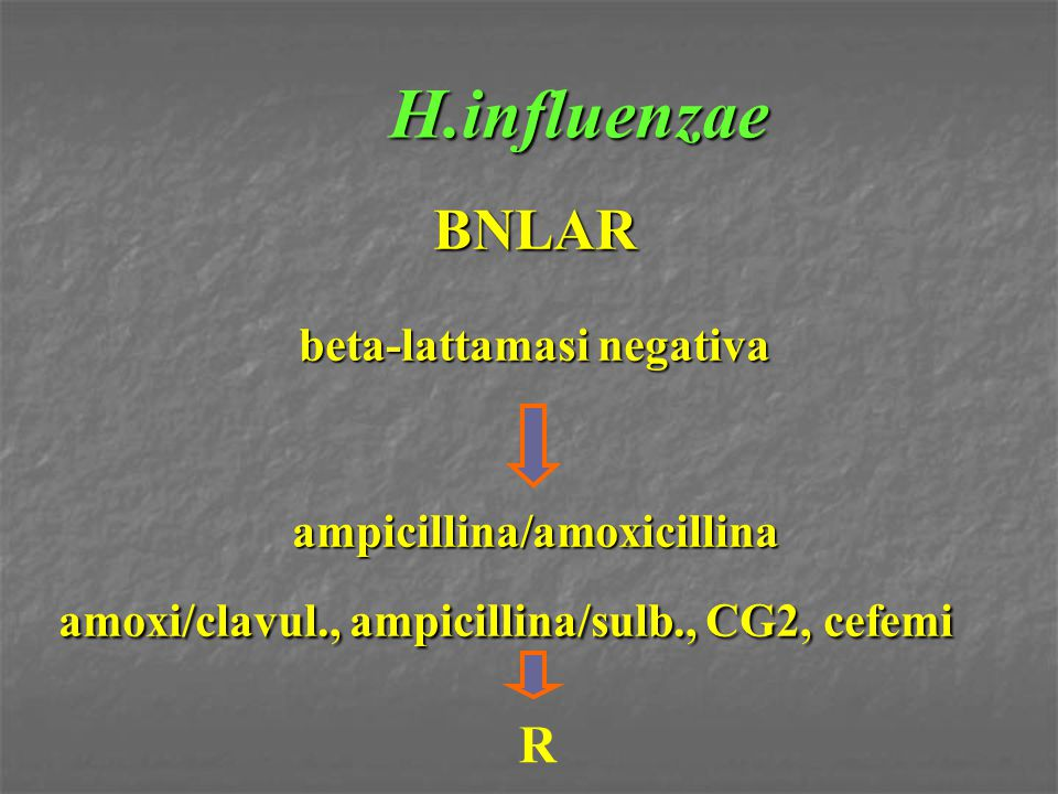H.influenzae BNLAR beta-lattamasi negativa ampicillina/amoxicillina amoxi/clavul., ampicillina/sulb., CG2, cefemi R