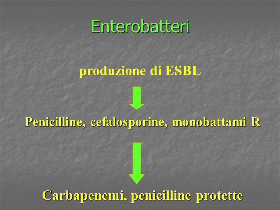 Enterobatteri Penicilline, cefalosporine, monobattami R Carbapenemi, penicilline protette produzione di ESBL