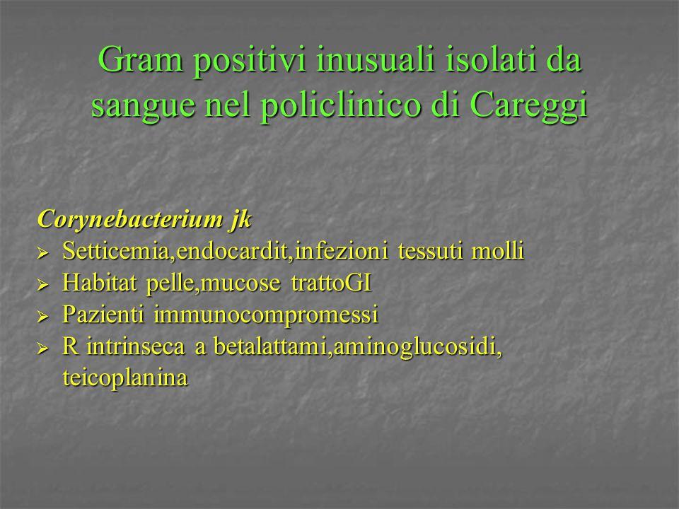 Gram positivi inusuali isolati da sangue nel policlinico di Careggi Corynebacterium jk  Setticemia,endocardit,infezioni tessuti molli  Habitat pelle
